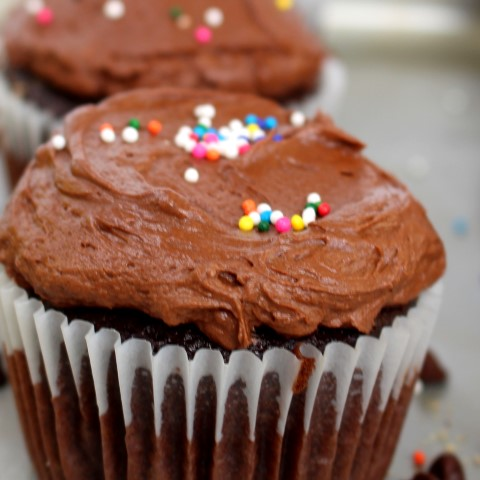 Chocolate Birthday Cupcakes. Who wouldn't love a rich chocolate cupcake with fluffy milk chocolate frosting for their birthday!?!? Be sure not to forget the sprinkles.