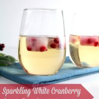 Sparkling White Cranberry Grape Punch - with Pomegranate Ice Cubes