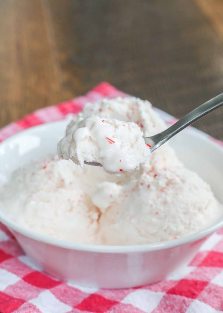 No Churn Peppermint Ice Cream
