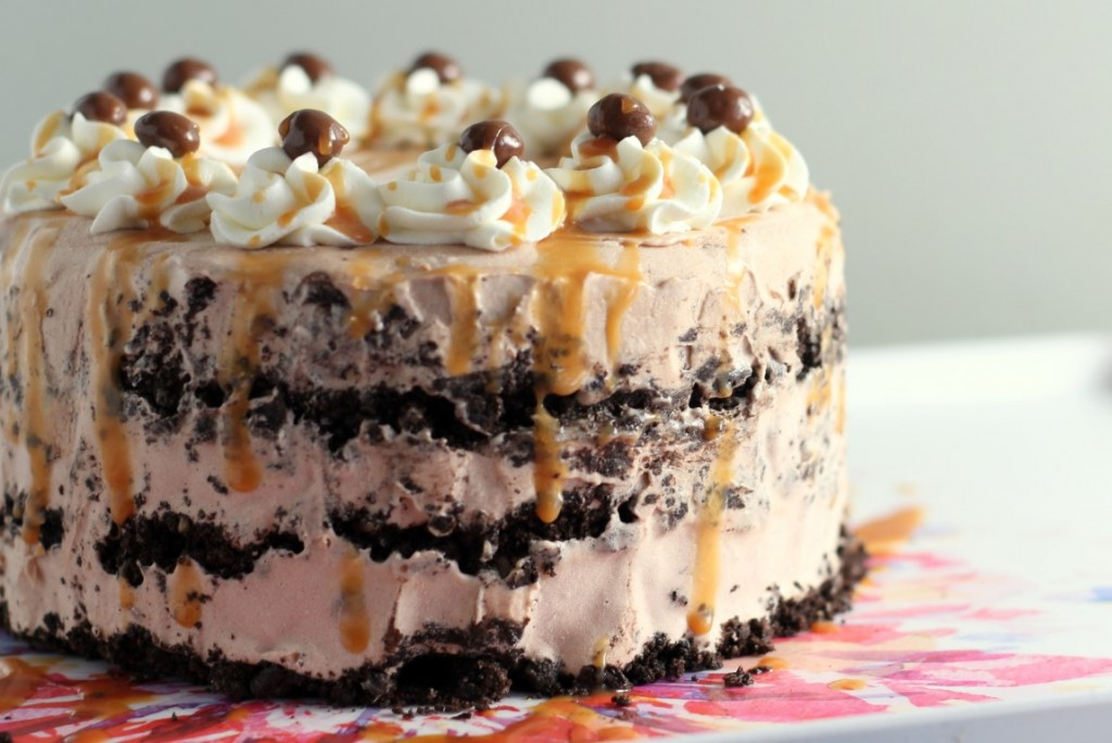 Salted Caramel Mocha Ice Cream Cake (2)