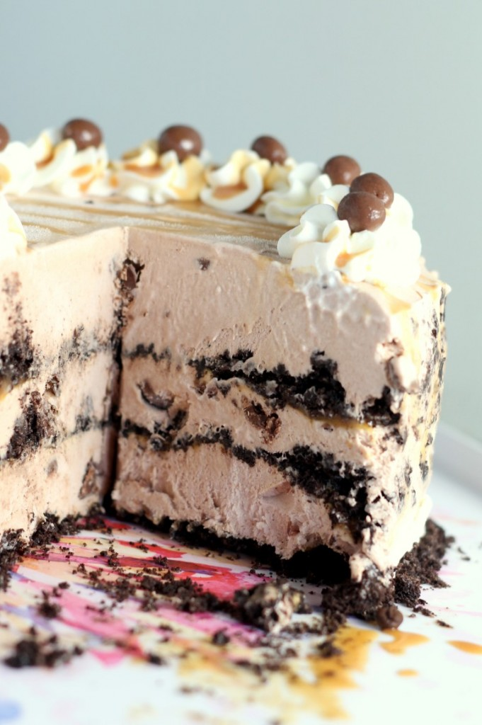 Salted Caramel Mocha Ice Cream Cake