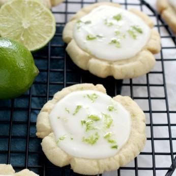 Coconut Lime Sugar Cookies are a fun twist on an easy sugar cookie recipe. They are delicious for summer parties and cookouts, but are also delicious on christmas and holiday cookie trays. A fun easy tropical cookie recipe.